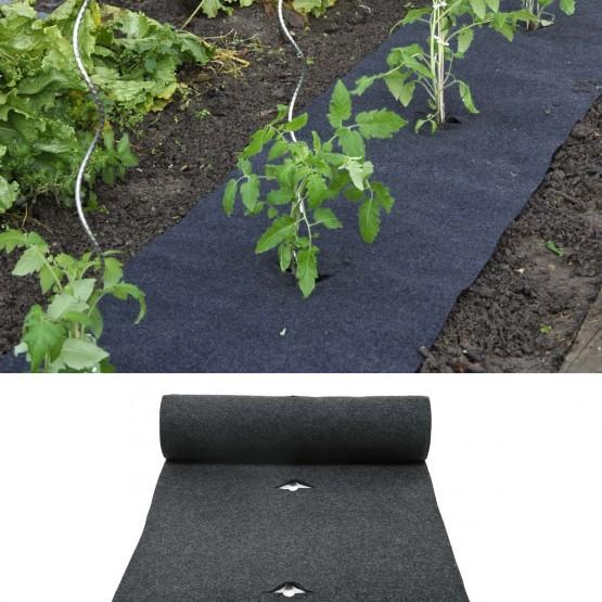 Beschermfolie-aardbeien en tomaten