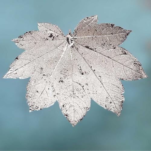 Esdoornblad-zilvermetaal