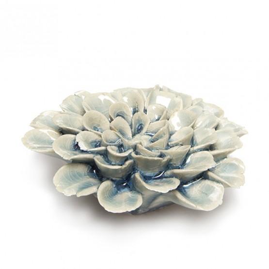 koraalbloem
