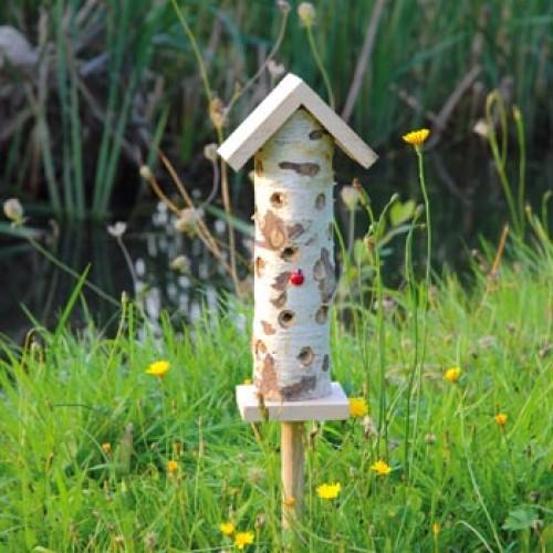 Toren lieveheersbeestje