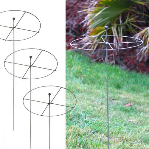 cirkelvormige plantensteun