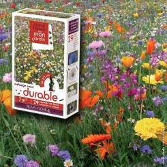assortiment veldbloemen - lange bloeitijd