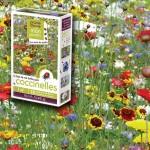 assortiment veldbloemen - meikevers