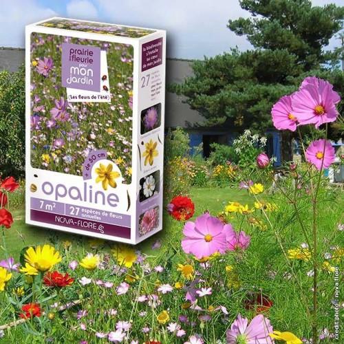 """assortiment veldbloemen - """"opaalkleurig"""""""