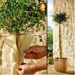 Groene beschermingshoes voor stammetjes van boompjes en planten