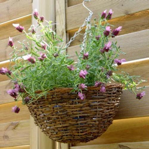Hangende bloemen- of plantenmand in riet/rotan  - 30 cm