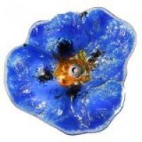 klaproos in glas - donkerblauw