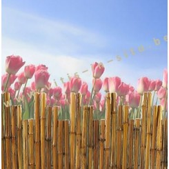 tuinscherm in bambou