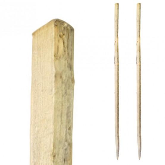 TWEE vastzettingspiketten voor kastanjehaag