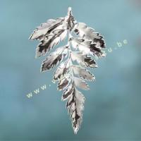 Varenblad in zilver