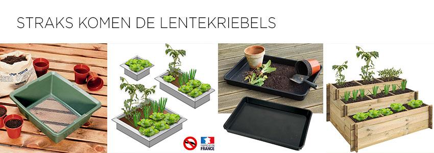 STRAKS KOMEN DE LENTEKRIEBELS