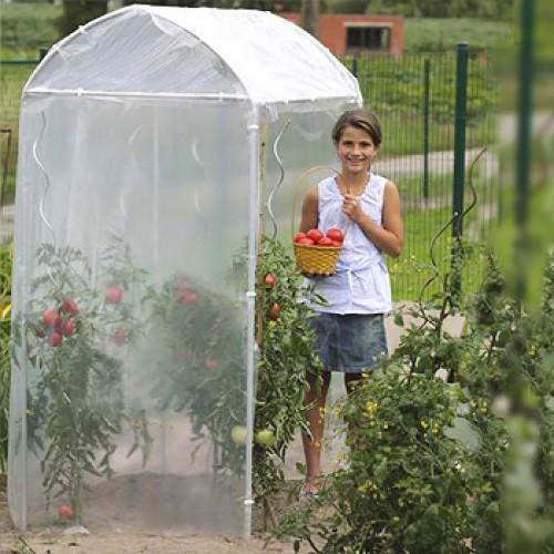 tomatenserre 1,20 m2
