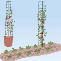 Steun voor groenten en planten