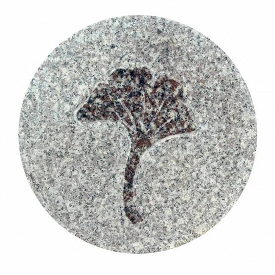 tuintegel-graniet-ginko