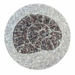 Japanse tuintegel in graniet - slakmotief